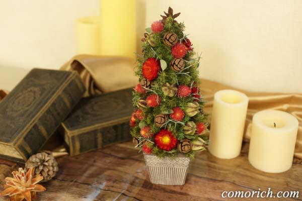 【日比谷花壇】クリスマス ドライツリー「ツリー ド ルージュ」