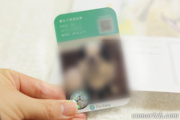 ペット犬の遺伝子検査「Pontely」をやってみた(採血なし!)
