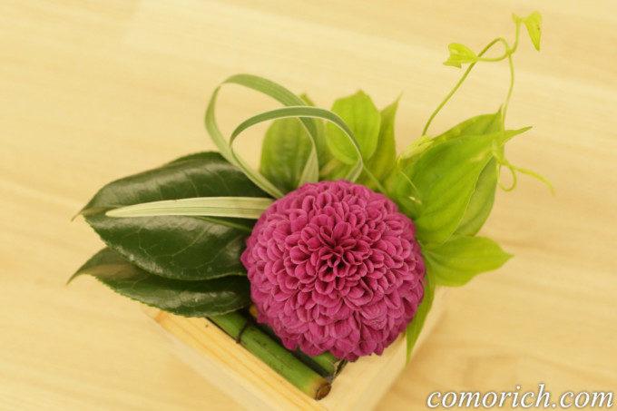 日比谷花壇デザイナーズアレンジメント「令和・凛」